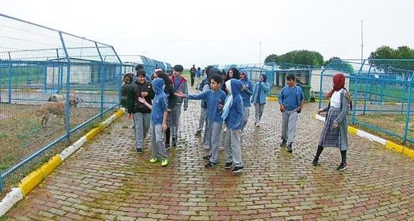 Gazi öğrencileri can dostlarını ziyaret etti