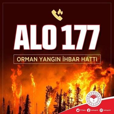 ALO 177 orman yangını ihbar hattı