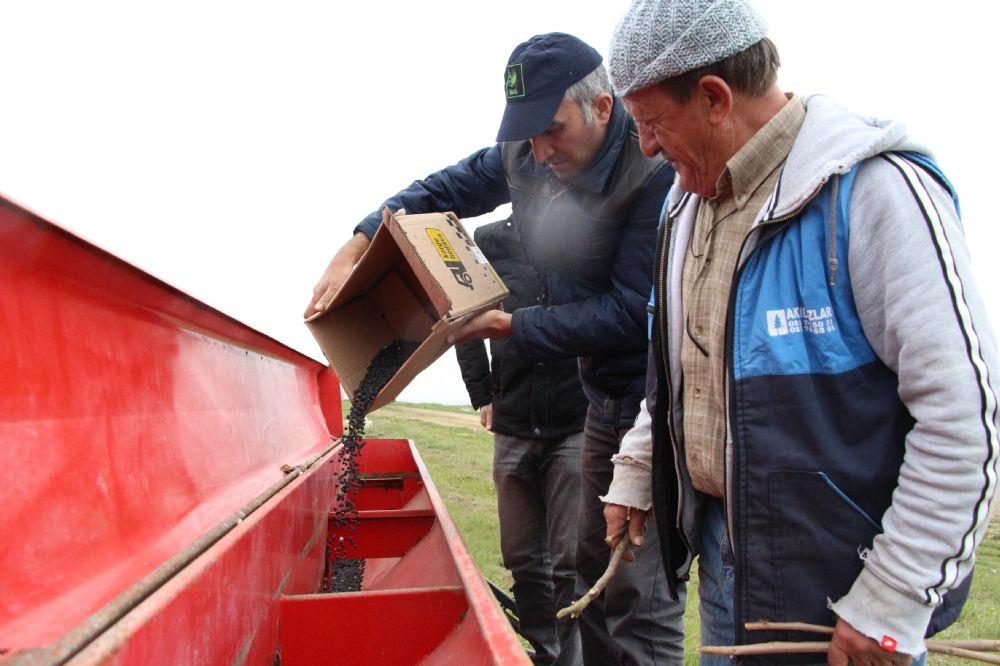 İBB, 28 dekarda yerli nohut deneme ekimini gerçekleştirdi