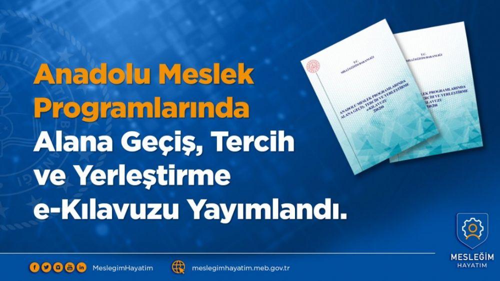 Anadolu Meslek Programlarından Alana Geçiş kılavuzu yayımlandı