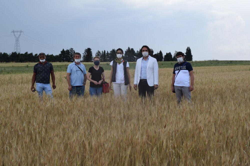 Müezzinoğlu, organik tarım uygulamalarını İlçe Tarım yetkilileriyle paylaştı