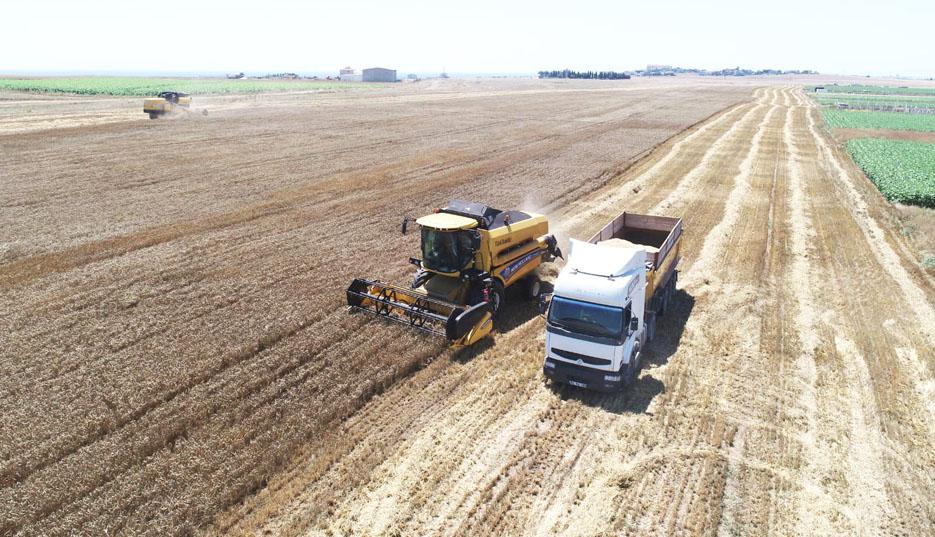 'Çiftçiye Tohum Desteği'nde hasat zamanı